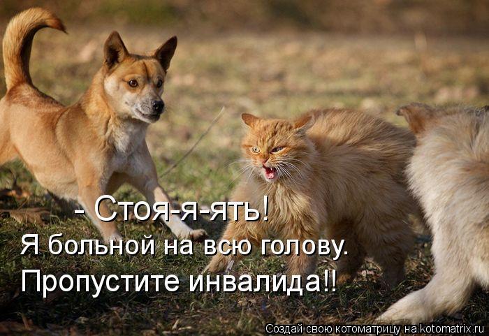 Больно́й на всю го́лову - Russian slang expression